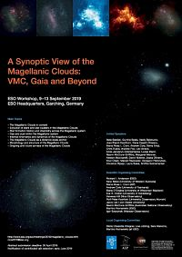 A Synoptic View of the Magellanic Clouds - VMC, Gaia and Beyond