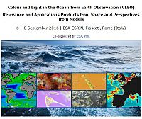 Colour and Light in the Ocean from Earth Observation (CLEO) - Relevance and Applications Products from Space and Perspectives from Models