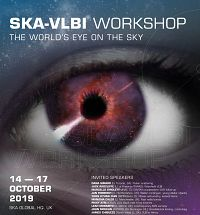 SKA VLBI Key Science Projects and Operations Workshop